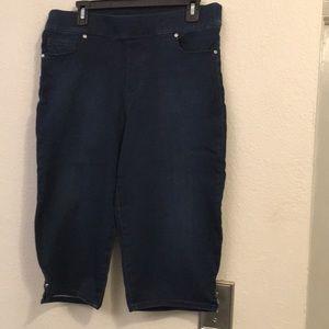 Gloria  Vanderbilt Ladies Jeans